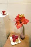 Detalhe da prateleira do banheiro Foto de Stock Royalty Free