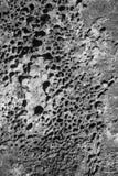 Detalhe da rocha ígnea. Fotografia de Stock