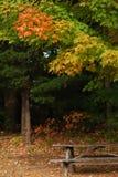 Detalhe da tabela de piquenique do outono Fotografia de Stock