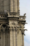 Detalhe da torre de Notre Dame. Imagem de Stock