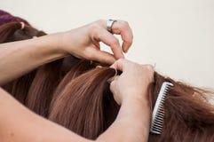 Detalhe da trança da mulher com os cabelos da juba do ho fotografia de stock royalty free
