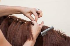 Detalhe da trança da mulher com os cabelos da juba do ho foto de stock