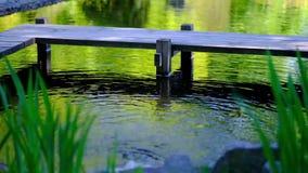 Detalhe de água dos fluxos no fundo do lago filme