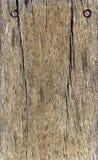 Detalhe de assoalho de madeira com dois parafusos Imagem de Stock