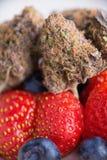 Detalhe de botões secados do cannabis & de x28; Strain& x29 de Rockberry; com frui fresco Imagens de Stock Royalty Free