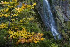 Detalhe de cachoeira Foto de Stock Royalty Free