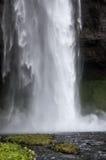 Detalhe de cachoeiras majestosas com rochas e grama Imagem de Stock Royalty Free