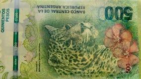 Detalhe de 500 contas dos pesos de Argentina Foto de Stock Royalty Free