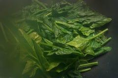 Detalhe de espinafres cozinhados Nutrientes do ferro vapor imagem de stock royalty free