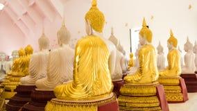 Detalhe de estátuas das Budas que decora o templo budista Imagens de Stock Royalty Free