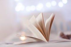 Detalhe de folhas do livro Foto de Stock Royalty Free