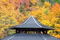 Detalhe de madeira antigo do telhado com fundo da folha do outono foto de stock
