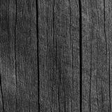 Detalhe de madeira da textura de Grey Black Wood Tar Paint da placa da prancha, grande close up escuro envelhecido velho do macro Fotos de Stock