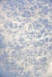 Detalhe de neve através da luz Imagem de Stock