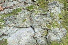 detalhe de pedra Foto de Stock