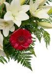 Detalhe de ramalhete das flores Imagens de Stock Royalty Free