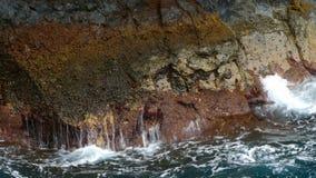 Detalhe de rochas e de ondas video estoque