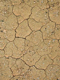 Detalhe de terra seca do barro Imagens de Stock Royalty Free