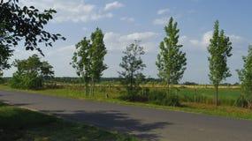 Detalhe de Toeroekszentmiklos na estrada secundária da rua de Szolnoki da periferia Imagem de Stock