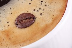 Detalhe de um feijão de café que flutua na espuma do café fotos de stock royalty free