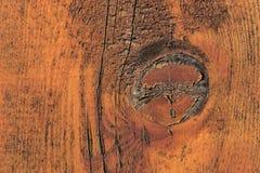 Detalhe de um nó na madeira alaranjada Imagem de Stock