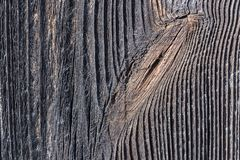 Detalhe de um nó na madeira escura Imagens de Stock