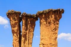 Detalhe de um pilar corroído do arenito Fotos de Stock