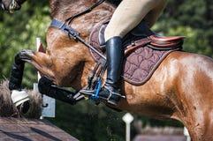 Detalhe de um salto do cavaleiro Fotografia de Stock Royalty Free