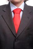 Detalhe de um terno e de um laço Fotografia de Stock Royalty Free