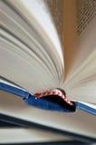 Detalhe de uma pilha do livro Fotos de Stock Royalty Free