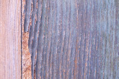 Detalhe disparado de uma porta de madeira velha Imagem de Stock