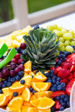 Detalhe do alimento do bufete do casamento foto de stock royalty free