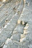 Detalhe do anfiteatro situado em Tarragona, Espanha imagem de stock royalty free