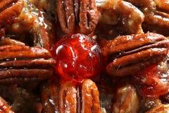 Detalhe do bolo da fruta do Pecan Foto de Stock