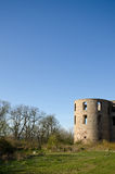 Detalhe do castelo Imagens de Stock