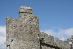 Detalhe do castelo de Ross Fotografia de Stock Royalty Free