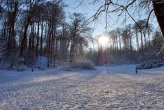 Neve nas árvores 2 imagens de stock royalty free