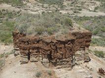Detalhe do desfiladeiro de Olduvai Imagens de Stock Royalty Free