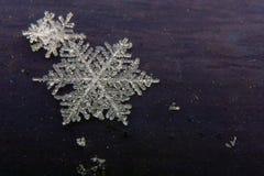 Detalhe do floco de neve imagens de stock