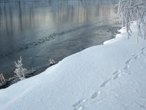 Detalhe do inverno fotos de stock royalty free