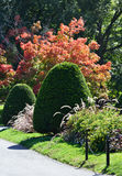 Detalhe do jardim de Boston Public Fotografia de Stock Royalty Free