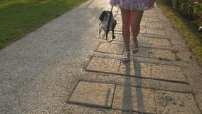 Detalhe do movimento lento dos pés da mulher que anda através da cidade no pavimento de atrás vídeos de arquivo