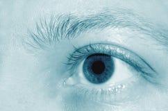 Detalhe do olho Imagens de Stock