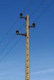 Detalhe do pilão da eletricidade fotos de stock