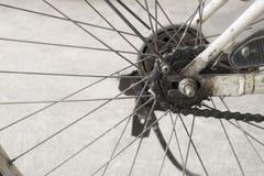 Detalhe do raio da roda de bicicleta Imagem de Stock
