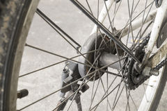 Detalhe do raio da roda de bicicleta Imagens de Stock