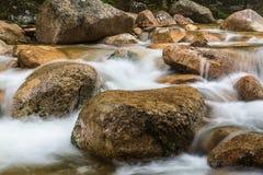 Detalhe do ribeiro de Sabbaday, montanhas brancas fotos de stock royalty free