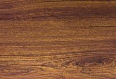 Detalhe do teste padrão de textura da madeira da teca Imagem de Stock