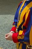 Detalhe do uniforme do protetor suíço Foto de Stock