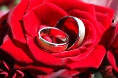 Detalhe dos anéis de casamento Foto de Stock